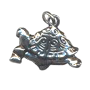 CH4&nbsp;tortoise charm